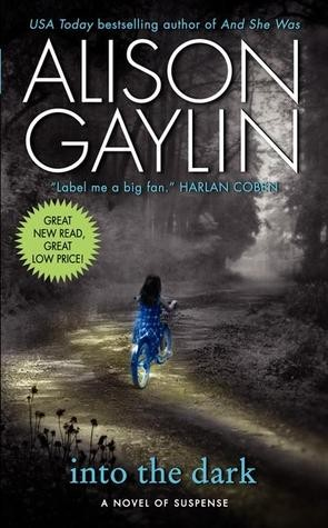 Into The Dark by Alison Gaylin