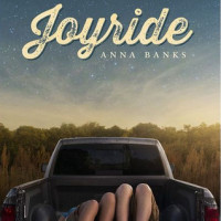 Blog Tour: Joyride