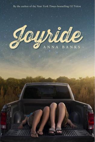 Blog Tour: Joyride