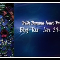 Blog Tour: Reign Of Shadows