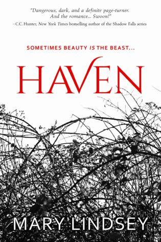 Blog Tour: Haven