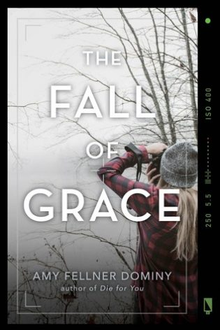 Blog Tour: The Fall Of Grace