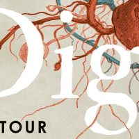 Blog Tour: Dig